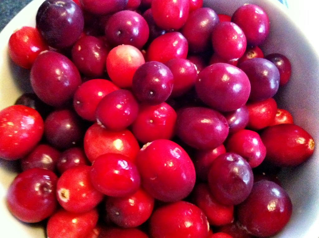 Orange Cranberry Sauce - fresh cranberries