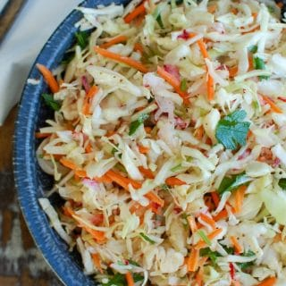 Healthy Coleslaw Up Close