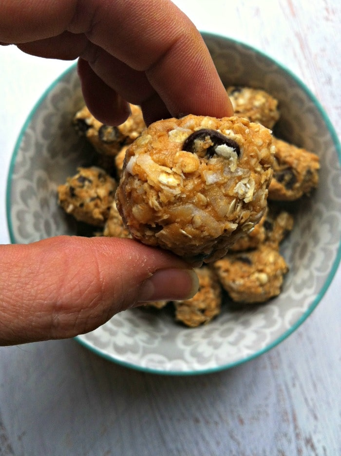 Peanut Butter Coconut Oatmeal Bites