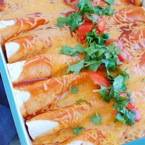 Chicken Enchiladas in a blue dish