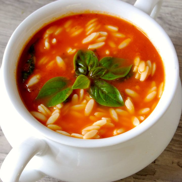Tomato Spinach Orzo Soup