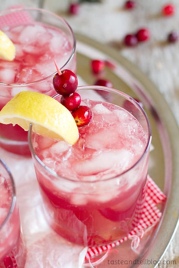 Sparkling-Cranberry-Punch-recipe-Taste-and-Tell-2