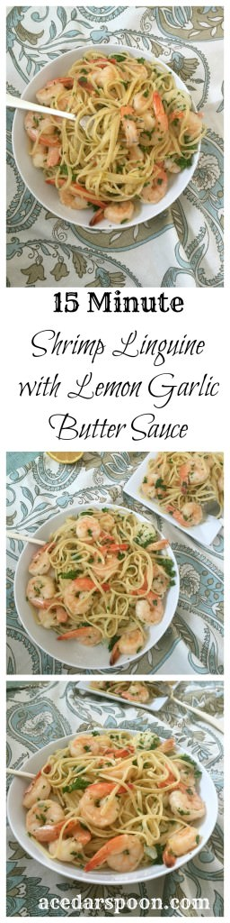 15 Minute Shrimp with Lemon Garlic Butter Sauce