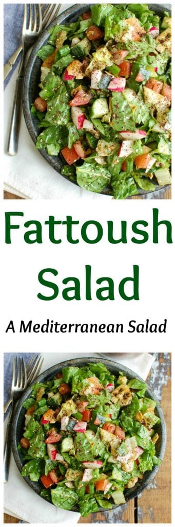 A healthy Middle Eastern Salad with a light, lemony vinaigrette dressing. This salad mixes crisp romaine, fresh vegetables, pita chips and a light lemony sumac dressing and is great with fresh farmers market vegetables.