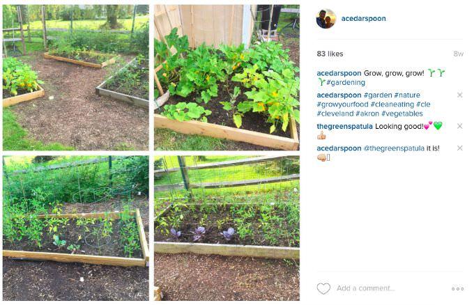 Garden A Cedar Spoon
