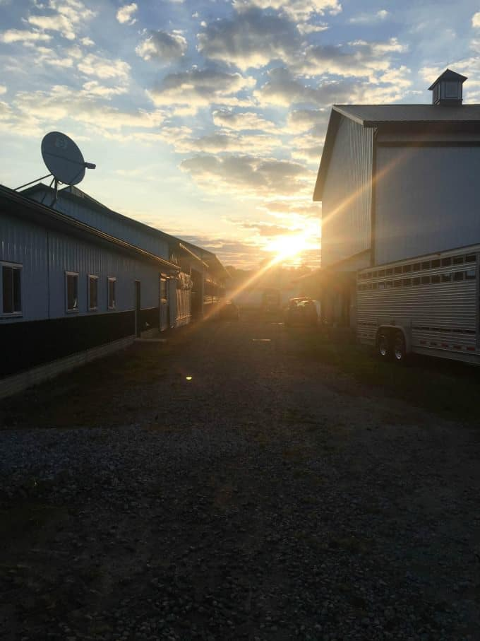 4 Ohio Dairy Farm