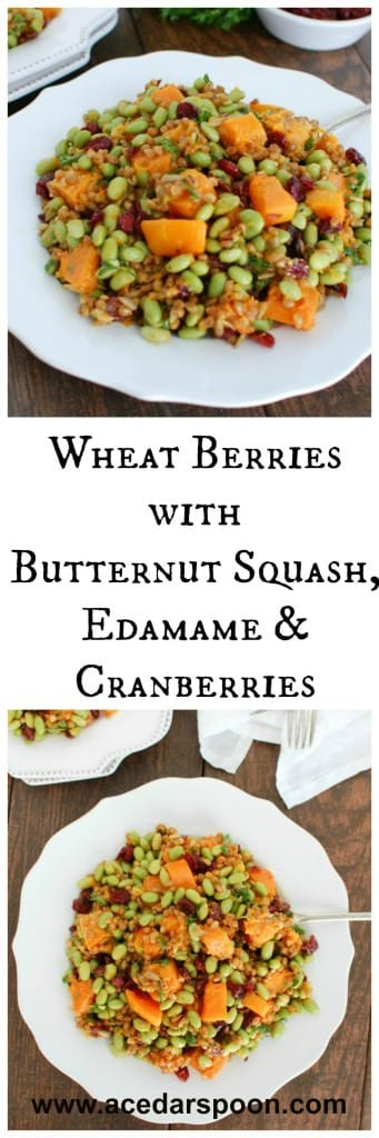 Wheat Berries with Butternut Squash, Edamame and Cranberries - nutritious