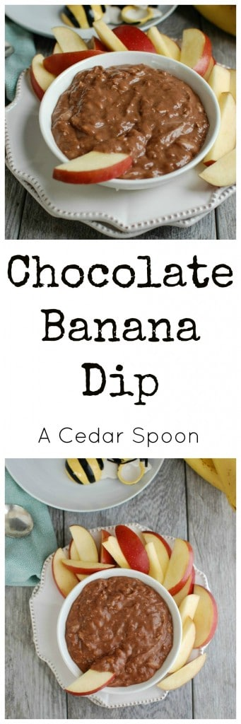 5 Ingredient Chocolate Banana Dip - so simple