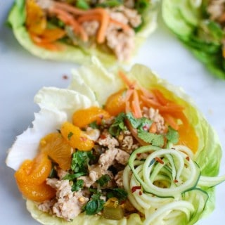 Asian Chicken Zoodle Lettuce Wraps