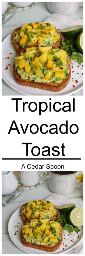 Tropical Avocado Toast - a healthy start to your day