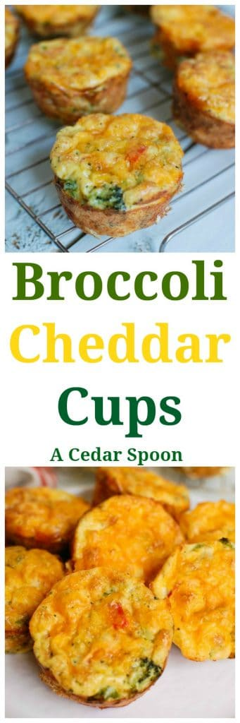 Broccoli Cheddar Cups are the perfect on-the-go breakfast and snack! So easy to throw together!