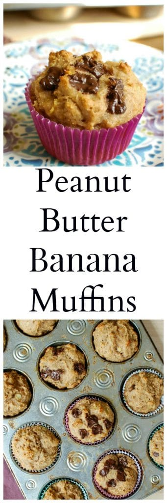 Peanut Butter Banana Muffins are soft, sweet muffins. These mix peanut butter, bananas, Greek yogurt and honey to create the perfect healthy treat!