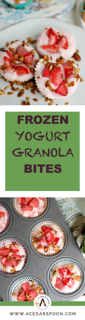 Frozen Yogurt Granola Bites work great as a snack or even breakfast. These bites mix together yogurt, granola, honey and fresh fruit to create a frozen treat the kids will think is dessert.