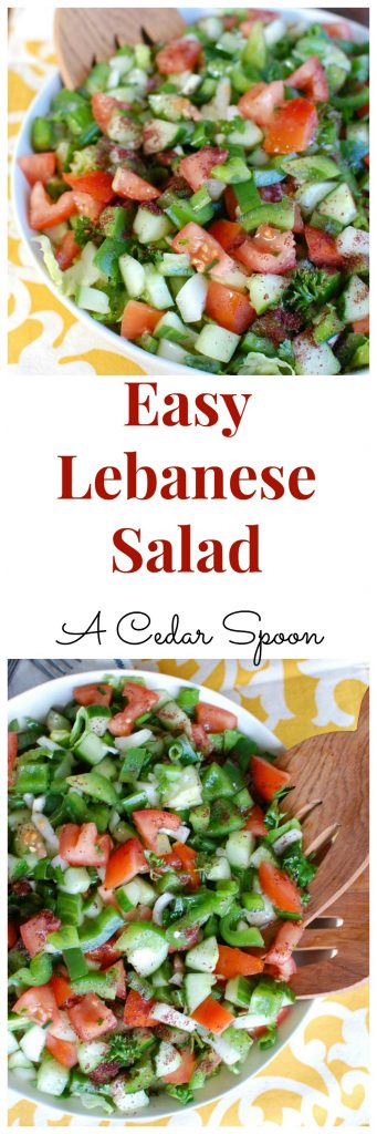 Easy Lebanese Salad, also known as Lebanese Salata, is a salad mixing chopped tomatoes, bell pepper, onion, cucumber, green onion and parsley topped with a lemony-mint dressing. This is healthy, light and the prefect addition to any meal or add grilled chicken or salmon to make it a meal itself.