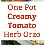 One Pot Creamy Tomato Herb Orzo Collage