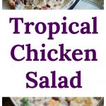 Tropical Chicken Salad Collage