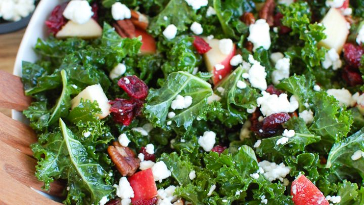 Kale Salad with Cranberries in white bowl